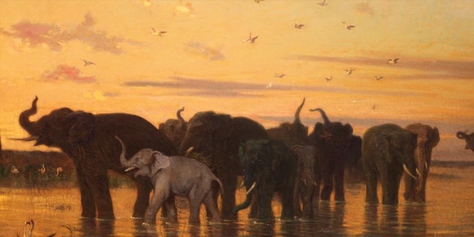 Ilustração de uma manada de elefantes ao por do sol em um lago.